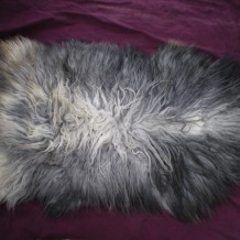 Icelandic Pelts are Here